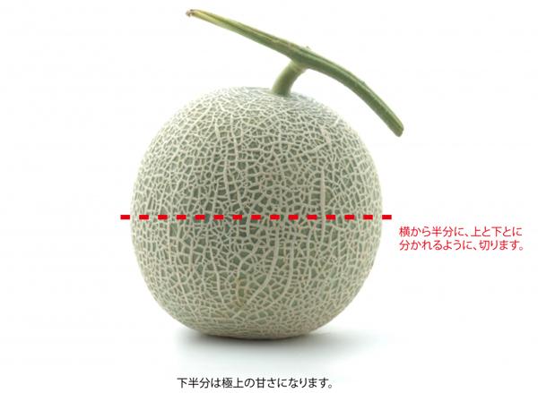 melon-sitahanbun