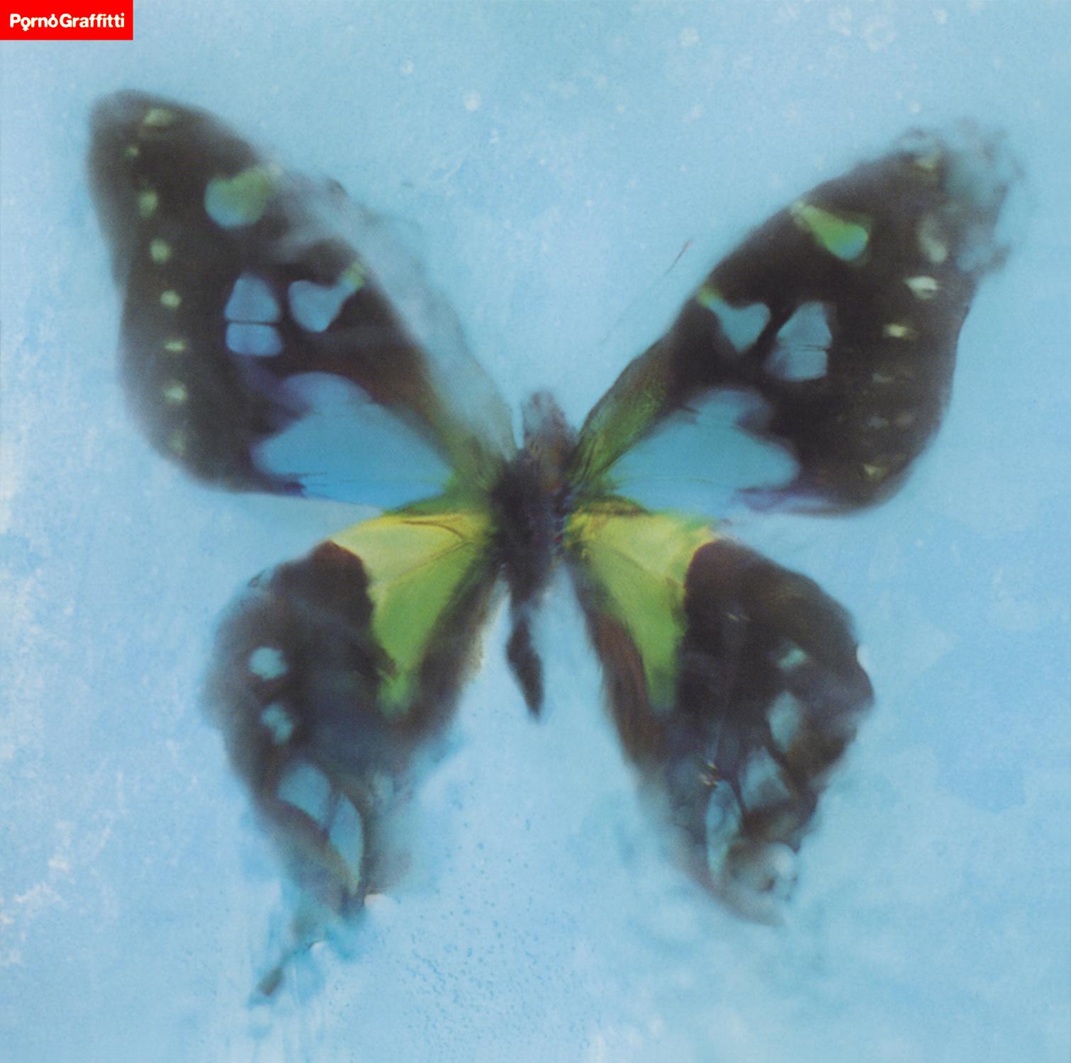 ポルノグラフィティ『アゲハ蝶』の高画質ジャケット画像